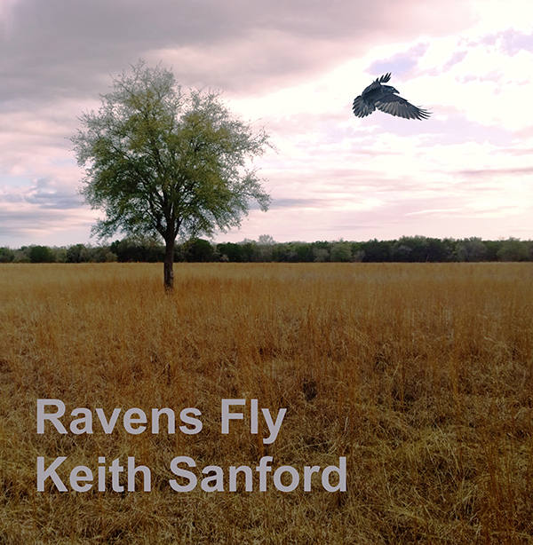 Raven's Fly is a song for children with disabilities.